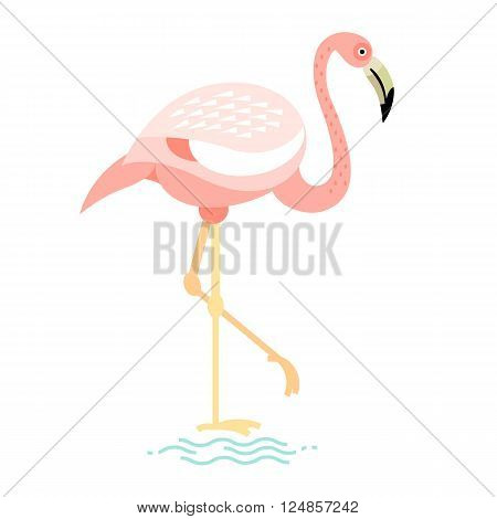 Vector image of a flat figure bird. Simplified design of bird from the wild. Graphic illustration of colored exotic bird isolated on white background. Water bird.