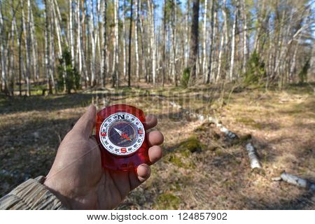 Compass orientation. Magnetic compass in the hand on the background of a wooded area.