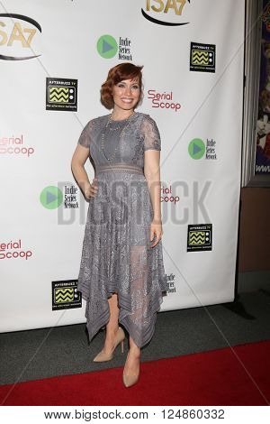 LOS ANGELES - APR 6:  Paula Rhodes at the 7th Annual Indie Series Awards at the El Portal Theater on April 6, 2016 in North Hollywood, CA