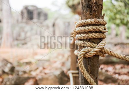 Rope tied in wooden pole in forest background