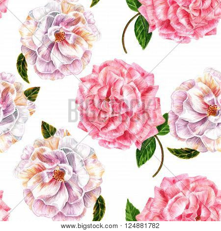 A seamless background pattern with vintage style watercolor drawings of tender pink and white roses
