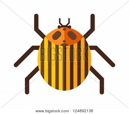 Beetle flat insect bug in cartoon style vector illustreation. Bug isolated. Bug icon flat style. Bug insect. Cartoon bug gold color