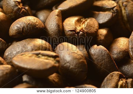 Gourmet Delicious coffee beans full of aroma Espresso Roast Whole Bean close up Dark Roasted best tasting coffee