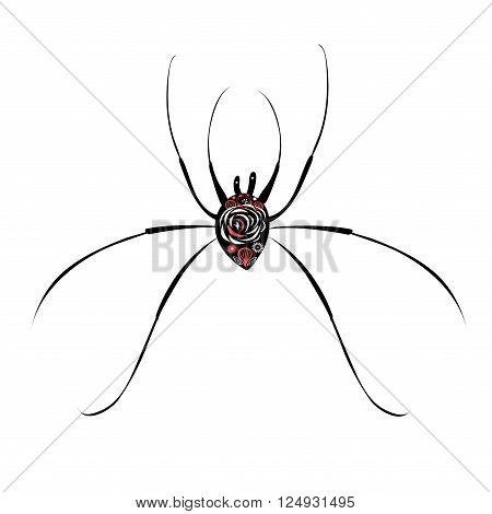 Beautiful illustration of a big spider on white background