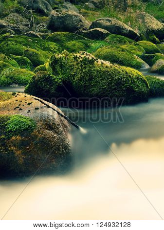 Big Boulders Covered By Fresh Green Moss In Foamy Water Of Mountain River. Light Blurred Cold Water