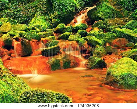 Cascades In Rapids Of Mineral Water. Red Ferric Sediments On Big Mossy Boulders Between Ferns.