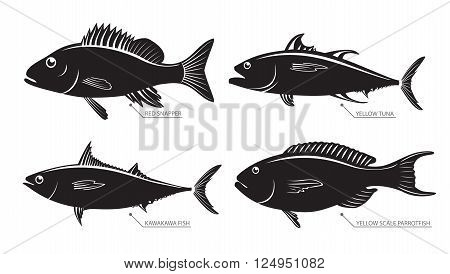 Vector illustration set of different kinds of fish. Silhouette of sea and river fish for stamps and labels isolated on white background