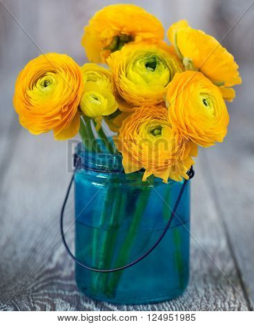 Yellow ranunculus in a small blue glass bucket