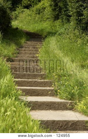 Stone Steps Leading Up A Hill