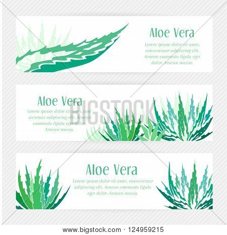 Aloe vera horizontal banners set. Stencil style.