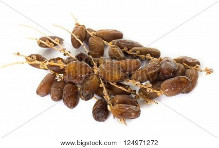 dried date palm in front of white background