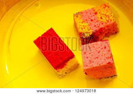three sponges with yellow paint in a bowl