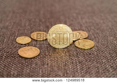 One Ukrainian Hryvnia Coin Macro at Blurred Background