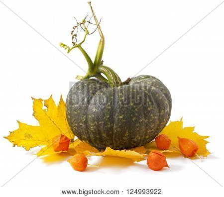 Colorful autumn leaves with Pumpkin on white background