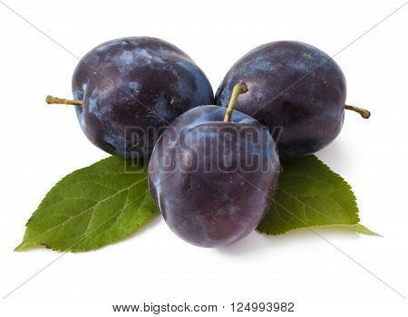 Three plums with leaves on white background