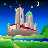 pic of graff  - Old rural medieval moated castle at bright summer night - JPG