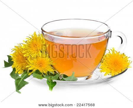 tea dandelion isolated on a white