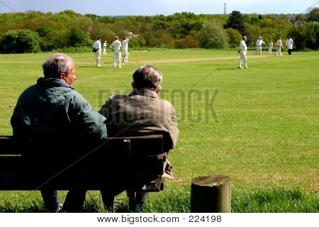 Cricket Spectators