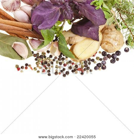 Fresh herbs and spices isolated on white