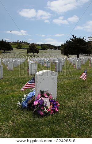 American Flags At National Cemetery