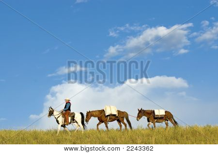 Cowboy With Supplies