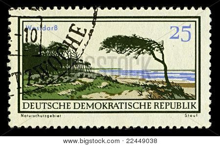 DDR-CIRCA 1980:A stamp printed in DDR shows image of The Darss is the middle part of the peninsula of Fischland-Darss-Zingst on the southern shore of the Baltic Sea in the German state, circa 1980.