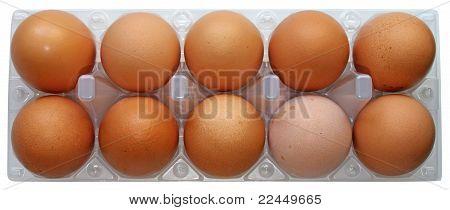 Dez ovos frescos