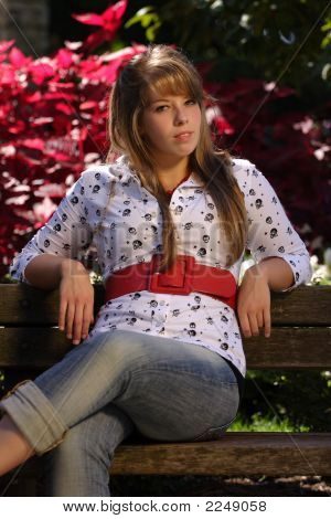 Beautiful Young Lady On A Park Bench