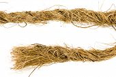 picture of coir  - Coarse coir rope from coco fiber isolated on white background - JPG