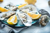 Fresh Oysters close-up on blue plate, served table with oysters, lemon and ice. Healthy sea food. Fr poster