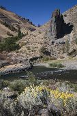 stock photo of yakima  - Yakima River With Yellow Flowers Washington Desert - JPG
