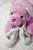 Постер, плакат: Детская обувь и Тедди