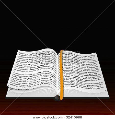 Vector Open Bible. Best Choice