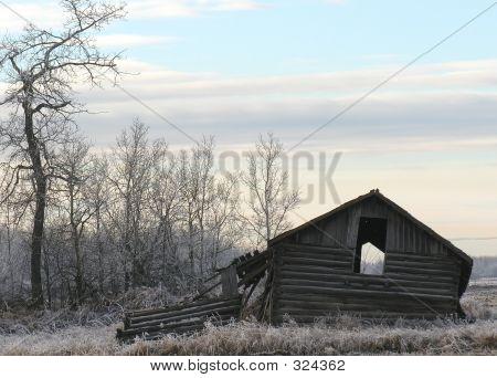 Pioneer Home 2