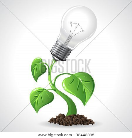 Grüne Energie Konzept Strom sparenden Glühbirnen.