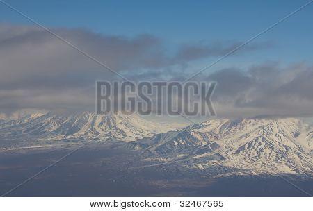 of a bird eye Kamchatka