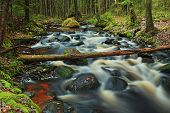 Fast Forest River Autumn Landscape Long Exposure, Hdr poster