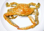 Top View Of Blue Swimming Crab Steamed Put On White Ceramic Plate., Steamed Crab Is One Of The Most  poster