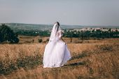 Romantic Beautiful Bride. Woman In A Wedding Dress Runs Across The Field. The Bride In A Beautiful W poster