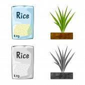 Vector Design Of Crop And Ecological Sign. Set Of Crop And Cooking Stock Symbol For Web. poster