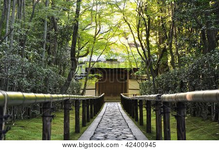 Approach Road To The Koto-in Temple, Kyoto, Japan