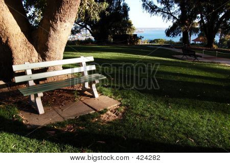 A Chair In A Park
