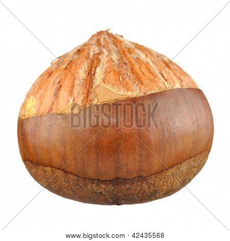 Half Peeled Chestnut Isolated On White Background
