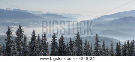 Carpathians Panoramic