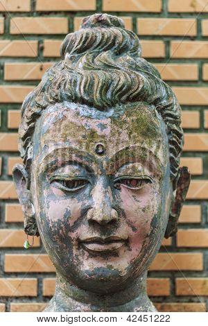 Head Buddha Head In Wat Umong Chiangmai