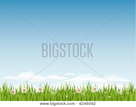 Spring Seamless Grass And Flowers
