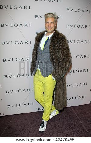 LOS ANGELES - FEB 19:  Cameron Silver arrives at the BVLGARI Celebrates Elizabeth Taylor's Jewelry Collection at the BVLGARI on February 19, 2013 in Beverly Hills, CA