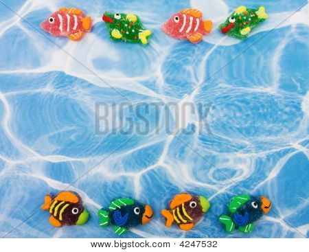 Colourful Fish Border
