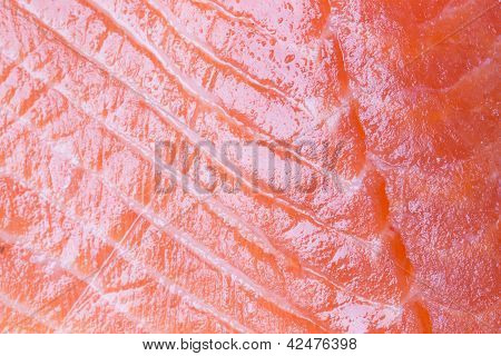 Raw Salmon Closeup