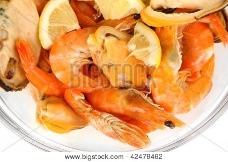 Seafood salad in bowl isolated on white